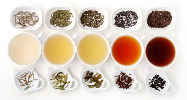 Different Typs of Tea 300 600 x 320